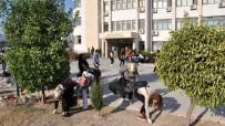 ÖĞRENCI İŞLERI - MEÜ Öğrencilerinden Çevre Temizliği