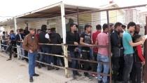 ÖZGÜR SURİYE ORDUSU - Suriyeliler Terörden Temizlenen Bölgelere Dönüyor