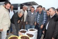 PAZARCI - Türkiye'nin Kestane Pazarı Düzce'de Kuruluyor