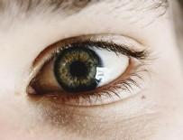 JOHNS HOPKINS ÜNIVERSITESI - Görme bozukluklarının tedavisi için retina üretildi