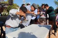 FANTEZI - Kaş'ta Hasat Ve Bal Şenliği Düzenleniyor