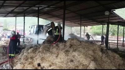 Muğla'da Besihane Yangını