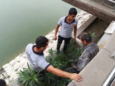 Oltasını Almak İçin Asi Nehri'ne İndi