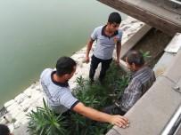 ASI NEHRI - Oltasını Almak İçin Asi Nehri'ne İndi
