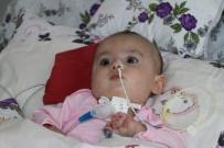 İHLAS - SMA Hastası 8 Aylık Hafsa Nur Hayatını Kaybetti