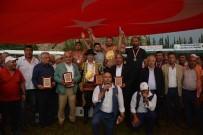 YAĞLI GÜREŞLER - Balaban, Dalyan'da Altın Kemer Taktı
