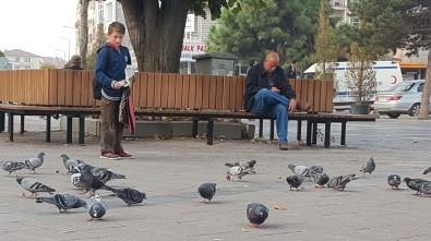 Düzce'nin Güvercinli Meydanları Çocukların İlgi Odağı Oldu