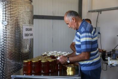 Tunceli'den İngiltere Ve ABD'ye Bal İhracatı
