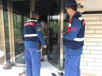 KAÇAK SİGARA - Balıkesir'de Hırsız Kapan Operasyonunda 117 Kişi Yakalandı