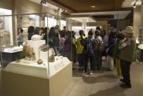 ANADOLU MEDENIYETLERI MÜZESI - Anadolu Medeniyetler Müzesi'nde Tarihin İlkleri Sergileniyor