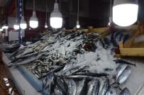 1 EYLÜL - Balıkçıların Gözü Hamside