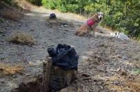 UZAKTAN KUMANDA - Bingöl'de 2'Si Tuzaklanmış Toplam 340 Kilo Patlayıcı Ele Geçirildi
