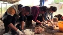 ŞEYH EDEBALI - İki Fransız Araştırmacı Kemik Eşyaların İzini Sürüyor