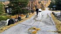 NORVEÇ - Norveç'te Sel Ve Toprak Kayması Felaketi