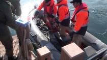 ODABAŞı - Şile'de Batan Gemi Faciasında 15 Yıl Hapis İstemi