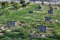 İZMIR ADLI TıP KURUMU - İzmir'de Kimsesiz Mültecilerin Defnedildiği Yer Açıklaması 412 Numaralı Ada