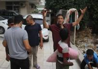 Sokakta Kalan Çocukların 'Hayvanlara Bile Yuva Yapıyorlar' İsyanı