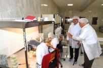 MEHMET YÜKSEL - Vali Karaloğlu, Fide Üretim Sahalarını Gezdi