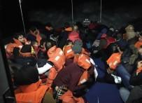 KAÇAK GÖÇMEN - 80 Kaçak Göçmen Yakalandı