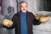 Nevşehir Patatesi Diyarbakır Karpuzu İle Yarışıyor