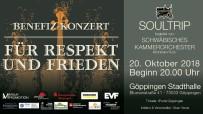 STUTTGART - Okan Yavuz'dan Altıncı Kez Saygı Ve Barış Konseri