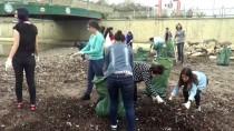 TÜRKÇE EĞİTİMİ - Üniversite Öğrencilerinden Sahil Temizliği