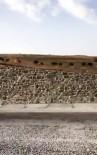 Varto Karayolunda Domuz Sürüleri Görüntülendi