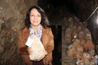 GIDA MÜHENDİSLİĞİ - 36 Metre Derinlikte Tadına Tat Katan Peynire İlgi Her Geçen Gün Artıyor