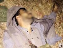 MEHMET ÖZDEMIR - HDP'li başkanın terörist oğlu çatışmada öldürüldü