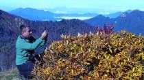 GÖLLER - Karçal Dağları'nda Sonbahar Güzelliği