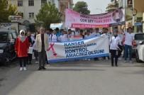 HITIT ÜNIVERSITESI - Osmancık'ta Meme Kanserine Farkındalık Yürüyüşü
