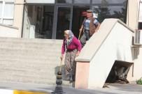 YAŞLI ÇİFT - Yaşlı Çift Unuttu, Devlet Unutmadı