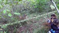 MEHMET ÖZDEMIR - Zonguldak'ta Bir Kişi Fındıklıkta Ölü Bulundu