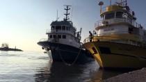GıRGıR - Batı Karadeniz'de Balık Bereketi