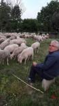JEOLOJI - Belediye Başkanı Yılmaz, Huzuru Çobanlıkta Buldu