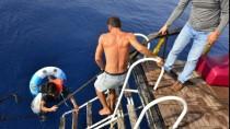 İÇMELER - 'Param Kalmadığı İçin Yüzerek Yurt Dışına Geçmeye Çalıştım'