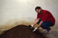 KİMYASAL GÜBRE - Söke'de Genç Girişimci Evinin Bodrumunda Solucan Gübresi Üretiyor