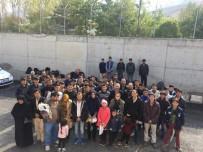KAÇAK GÖÇMEN - Van'da 56 Kaçak Göçmen Yakalandı