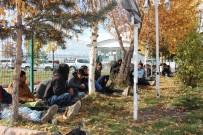 İNSAN KAÇAKÇILARI - Kaçak Göçmenleri Ankara Diye Ardahan'a Bıraktılar