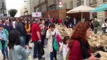 GEÇİŞ ÜCRETİ - Madrid'de Bin 500 Koyunla Ortaçağ Geleneği Canlandırıldı