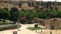 SURİYE - Urfa'nın Son Kürkçüleri Zamana Direniyor