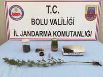 KAÇAK SİGARA - Bolu'da, Kaçak Sigara Ve Uyuşturucu Operasyonu