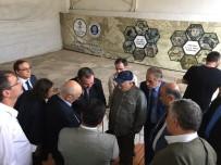 MOZAİK MÜZESİ - Germanicia Mozaikleri Ziyaretçilerini Ağırlıyor
