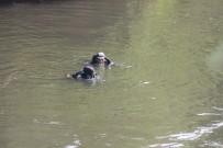 ÖZEL TİM - Asi Nehri'ne Düşen Çocuk İki Koldan Aranıyor