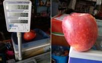 SOĞUK HAVA DEPOSU - Bir Elma Tam 720 Gram Geldi