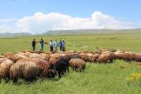 Iğdır'da Üreten Çiftçi Desteklenecek