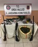 Ordu'da Uyuşturucu Ve Kaçak Silah Operasyonu