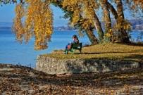 SÜT ÜRÜNLERİ - Sonbaharı Sağlıklı Geçirebilmek İçin Bunlara Dikkat Edin