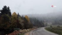 Bolu'ya Mevsimin İlk Karı Düştü