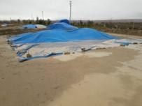 Çankırı'da Sağanak 4 Bin Ton Çeltiğe Zarar Verdi
